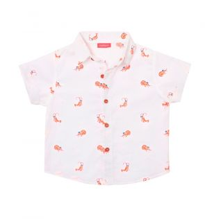 Baby Boys White Shrimpy Short Sleeve Shirt