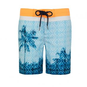 Teen Boys Blue Palm Tree Board Shorts